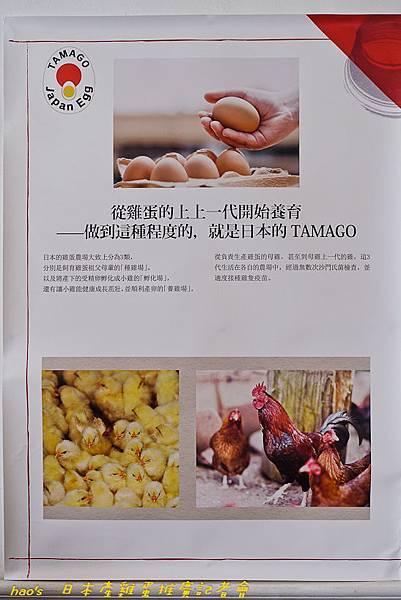 201609日本產雞蛋047.jpg