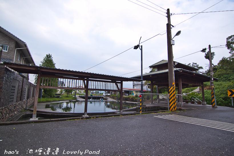 201609池塘邊邊122.jpg