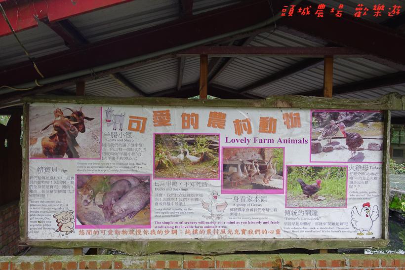 201610頭城農場118.jpg