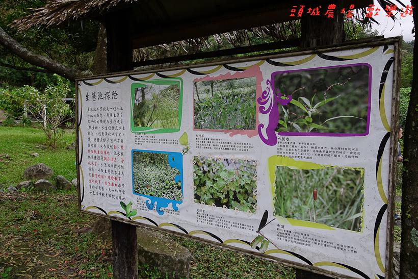 201610頭城農場138.jpg