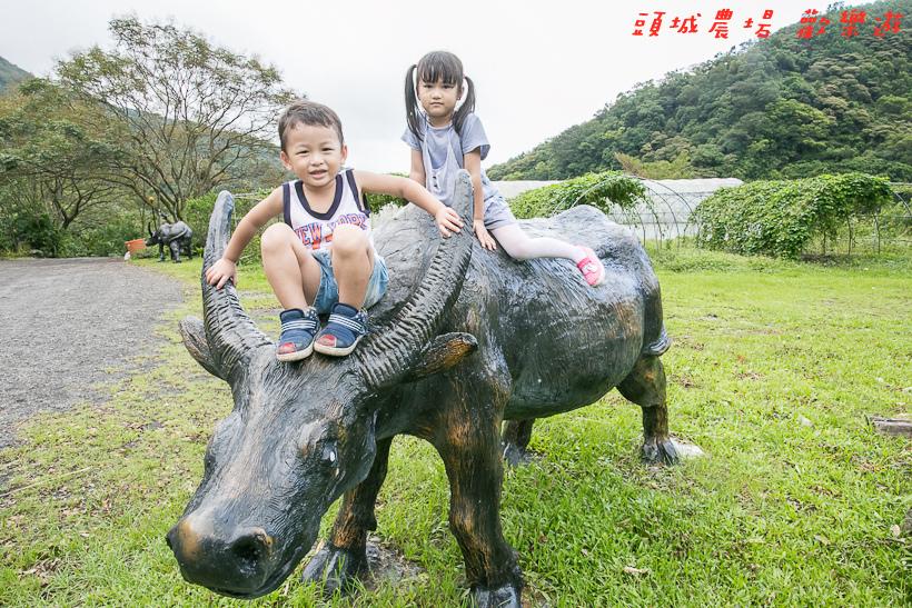 201610頭城農場141.jpg