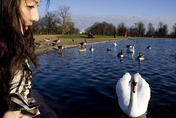 ♥ Days in London - Hyde Park ♥ 海德公園一帶 + Kensington Palace ♥