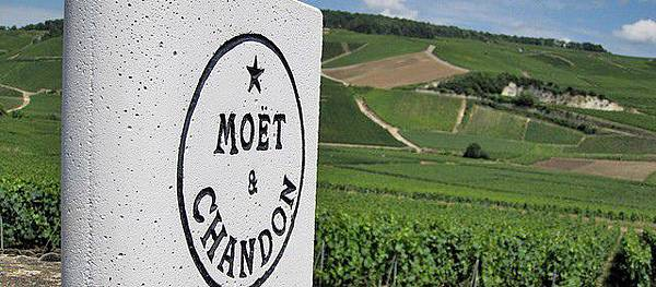 FromTheNorth-Moët-Chandon-vineyards-in-Ay-Champagne-region.-640x280