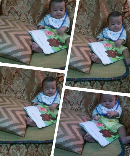 4個月大的小博士寫真紀錄5