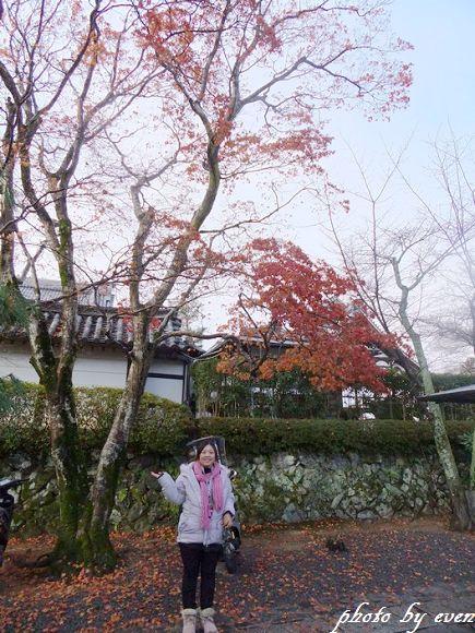 2011年日本旅遊嵐山12