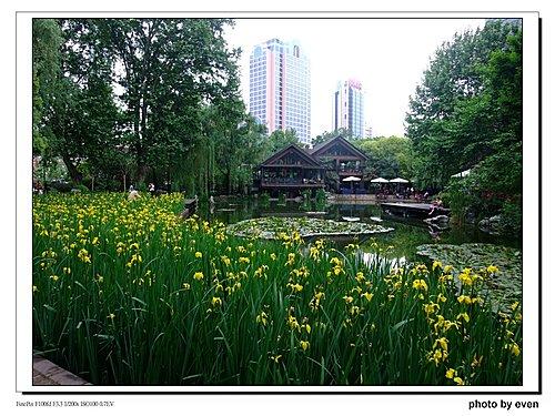 上海靜安公園2