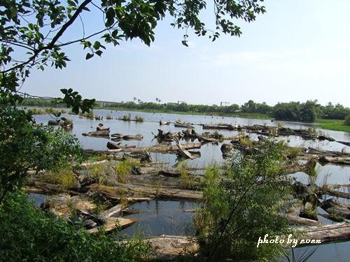 羅東林業文化園區16