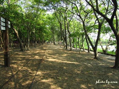 羅東林業文化園區9