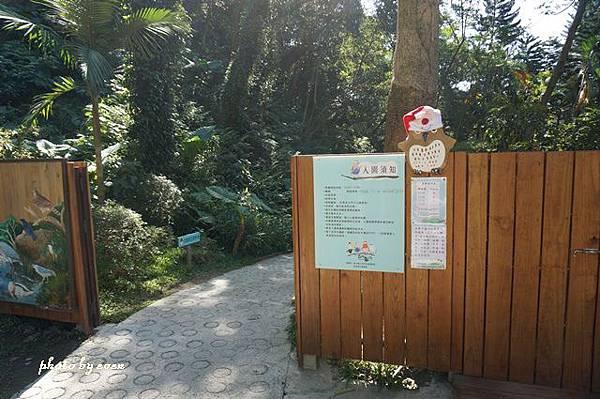 森林鳥花園5.JPG