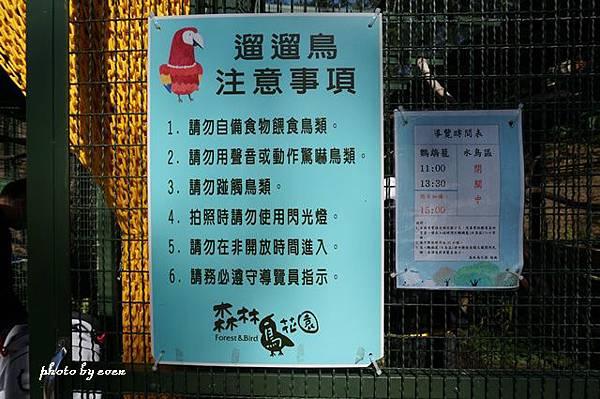 森林鳥花園8.JPG