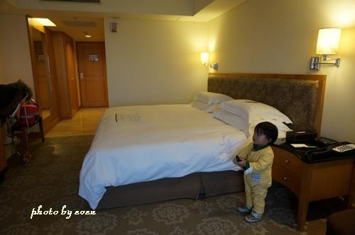 金典酒店14