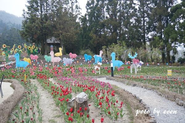 清境小瑞士花園6.JPG