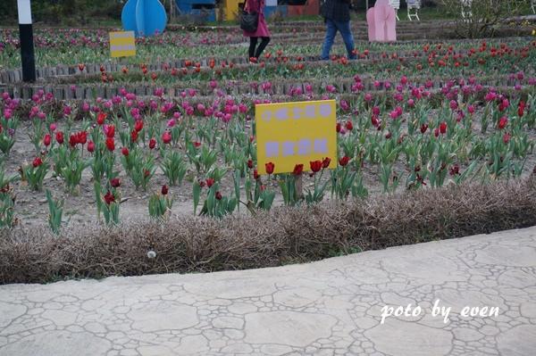 清境小瑞士花園16.JPG