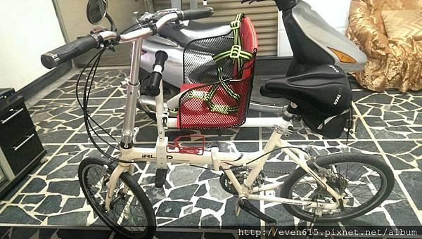 親子腳踏車8