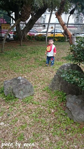 竹林山寺櫻花015-20150221