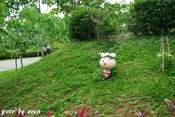 桐花公園110-20150419
