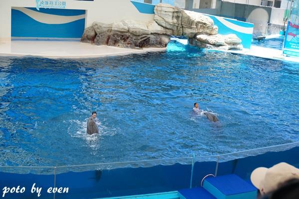 海洋公園049-20150614