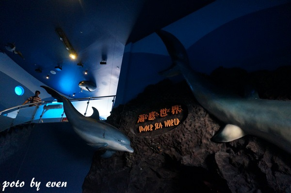 海洋公園090-20150614