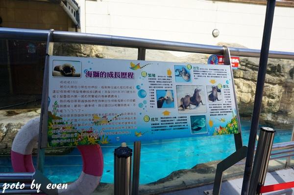 海洋公園126-20150614