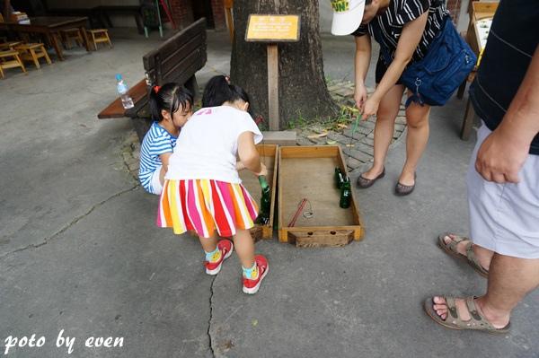 台中老樹根042-20150717