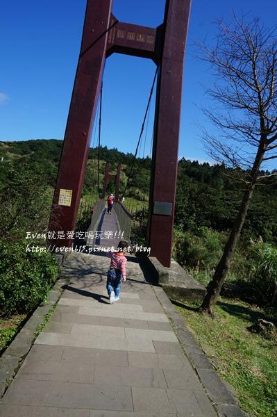 陽明山芒草026-20151128