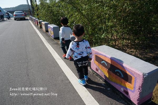 蘆竹外山花海052-20151212