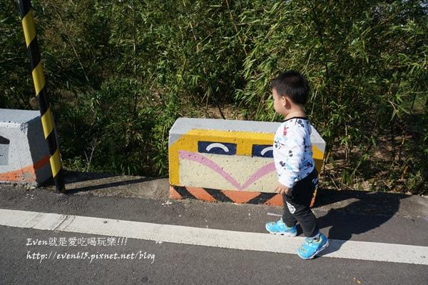 蘆竹外山花海053-20151212