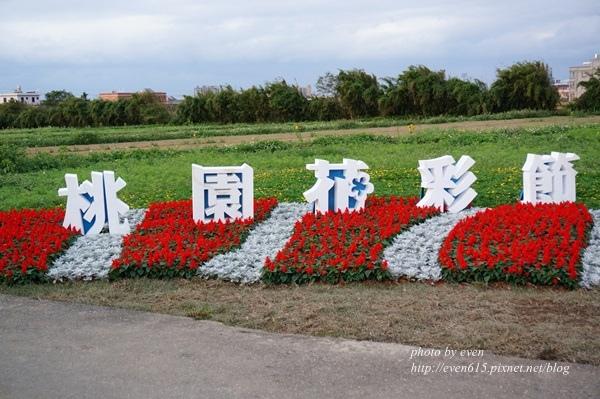 華泰雞玉拉麵051-20151219.JPG