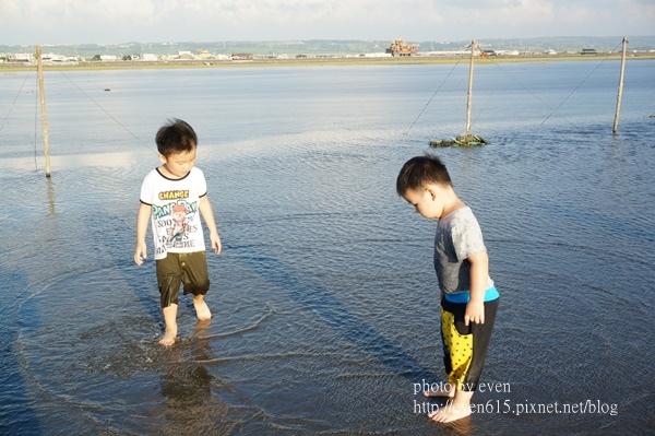 高美濕地096-20160603.JPG