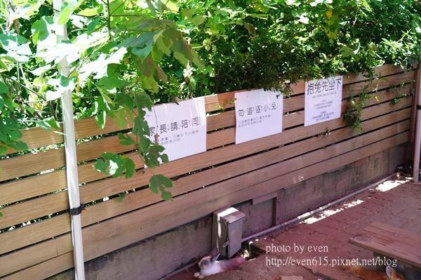 溝貝之家009-20160618.JPG