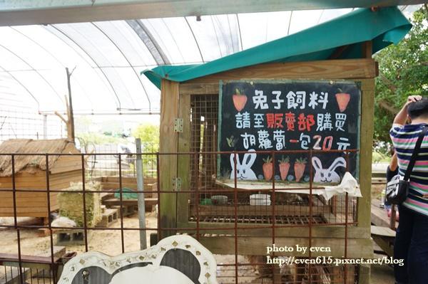 青林農場006-20161021.JPG