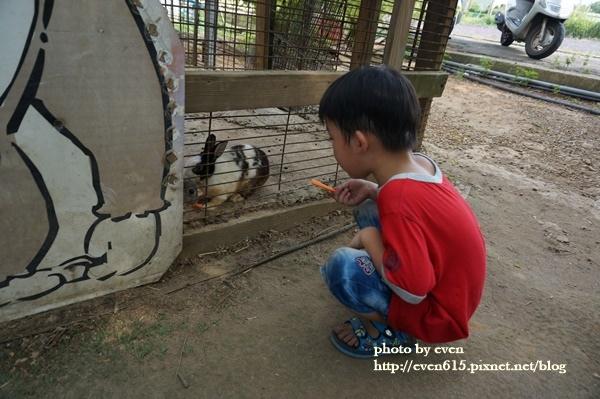青林農場057-20161021.JPG