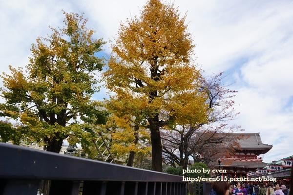 東京淺草寺028-20161127.JPG