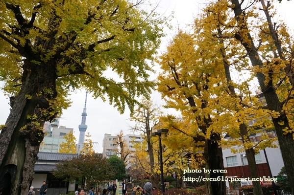 東京淺草寺034-20161127.JPG