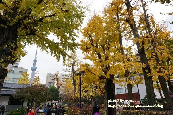 東京淺草寺035-20161127.JPG