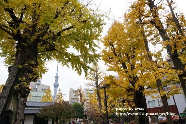 東京淺草寺038-20161127.JPG