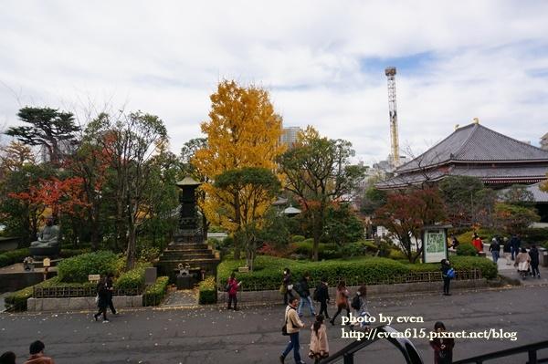 東京淺草寺076-20161127.JPG