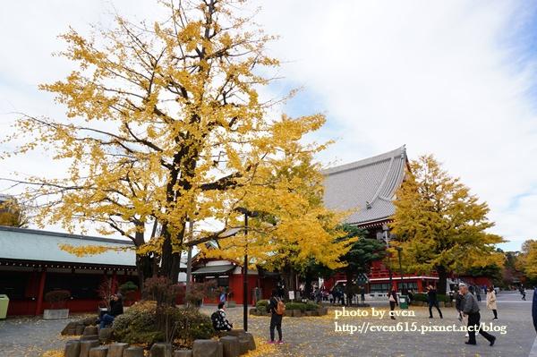東京淺草寺106-20161127.JPG