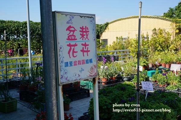中社花園002-20161230.JPG