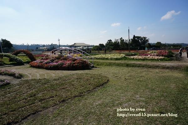 中社花園022-20161230.JPG