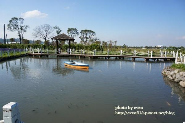 中社花園034-20161230.JPG