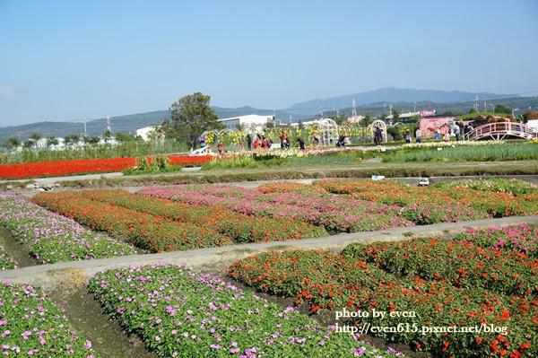 中社花園079-20161230.JPG