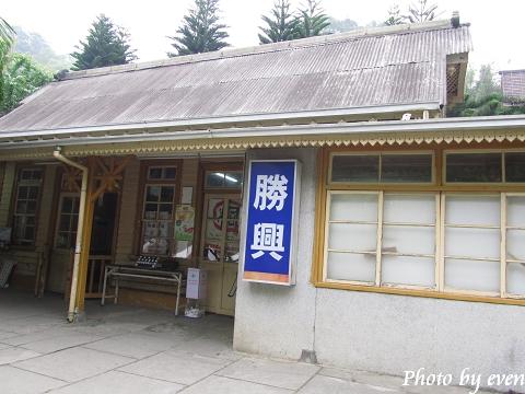 2011.04.29三義油桐花8.jpg