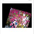 螢幕快照 2014-03-22 下午5.39.05.png