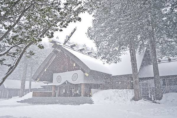 北海道神宮本殿與紛飛的白雪相輝映,只有冬日才能見的浪漫景象.jpg