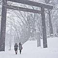 漫步在雪花紛飛的円山公園,讓人直呼浪漫.jpg