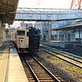 指宿玉手箱號進站,黑白相間的塗裝特別顯眼.JPG
