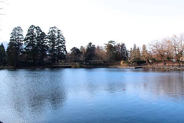 晨間的金麟湖畔,美不勝收.JPG