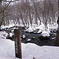 冬天的奧入瀨溪流雖沒有湍急的河流景觀,但可看到獨具特色的雪景.jpg