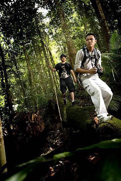 婆羅洲KUBAH國家公園
